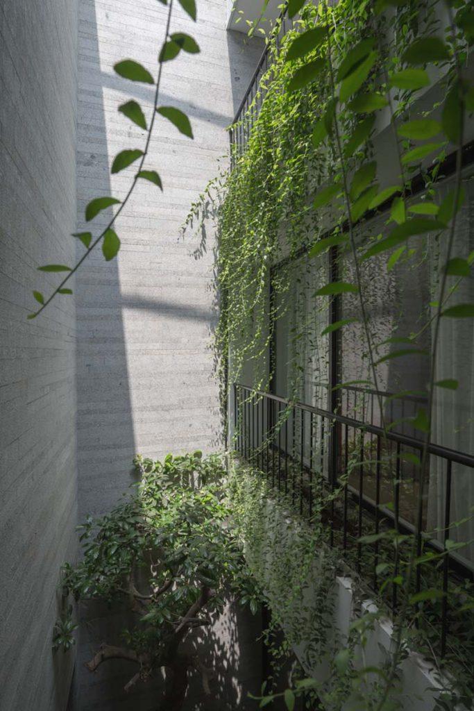 1001 giai phap thiet ke nha pho phan 1 gieng troi trong nha 14 683x1024 - 1001 giải pháp thiết kế nhà phố đẹp ( phần 1): giếng trời trong nhà