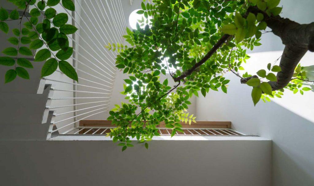 1001 giai phap thiet ke nha pho phan 1 gieng troi trong nha 35 1024x608 - 1001 giải pháp thiết kế nhà phố đẹp ( phần 1): giếng trời trong nhà