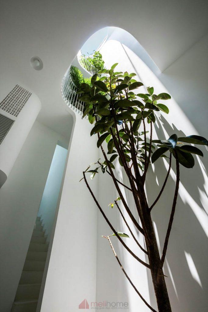 House 304 Ngôi nhà phố đẹp 40m2 với giếng trời đầy nắng 11 683x1024 - House 304: Ngôi nhà phố đẹp 40m2 với giếng trời đầy nắng